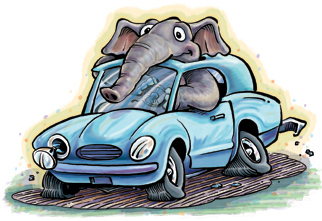 Illustration of elephant driving a car